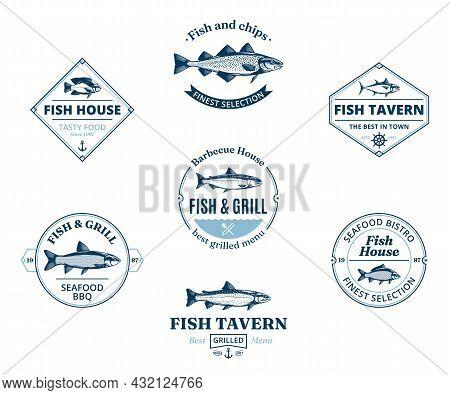 Fish Logo, Labels And Design Elements