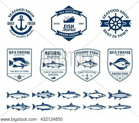 Seafood Logo, Labels And Fish Illustrations