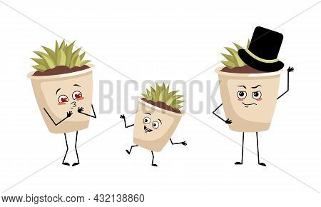 Family Of Cute Indoor Plant In A Pot Characters With Joyful Emotions, Face, Happy Eyes, Arms And Leg