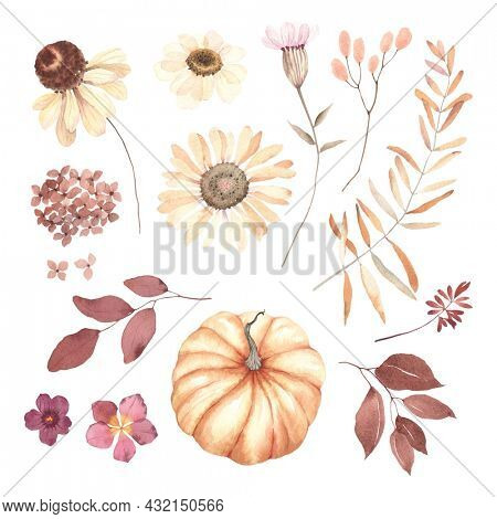 Autumn floral set with pressed flowers daisy, leaves and pumpkin, watercolor isolated collection in vintage style, burgundy and delicate yellow colors, autumn decors for invitation or greeting cards.