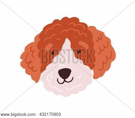 Cute Dogs Face. Funny Head Of Puppy With Curly Fluffy Hair. Canine Animals Muzzle. Adorable Doggy Po