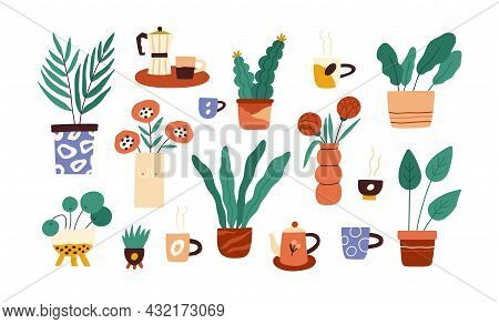 Set Of House Plants In Pots And Flowers In Vases. Indoor Houseplants With Leaf Growing In Flowerpots