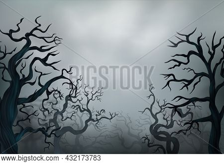 Halloween Leafless Trees Silhouettes With Spooky Dry Branches In Fog On Background With Grey Sky Rea