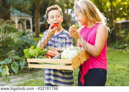 Happy caucasian brother and sister in garden with box of fresh organic vegetables pretending to eat. gardening, self sufficiency and growing home produce.