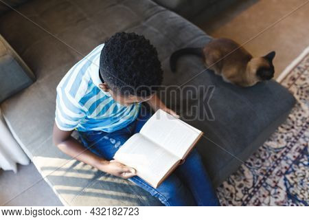 Elevated view of african american boy reading book and sitting on couch with cat in living room. spending time alone at home.