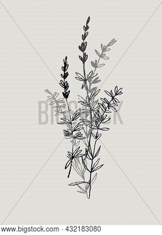 Decor Printable Art. Hand Drawn Lavender Branches, Twigs