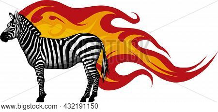 Animal Illustration Of Vector Zebra With Flames