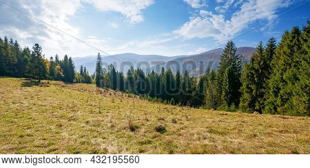 Landscape With Coniferous Forest On The Hill. Beautiful Nature Scenery On A Bright Sunny Morning. Wo