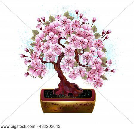 Artistically Drawn, Pink, Japanese Cherry Blossom Bonsai In Golden Ceramic Flower Pot Against White