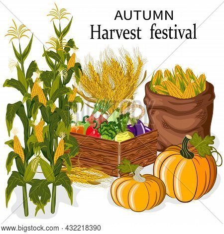 Autumn Harvest In Vector Illustration.colored Vector Illustration With Autumn Harvest Products And T