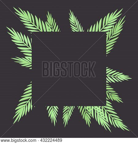 Palm Tree Square Background, Copyspace For Tropical Themed Card Decor. Green Tropical Leaves, Jungle