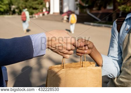 Contemporary schoolboy taking paperbag with food for lunch passed by his mother