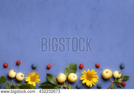 Composition Of Branches With Apples, Blackthorn Berries, Sunflower Flowers On A Purple Background. T