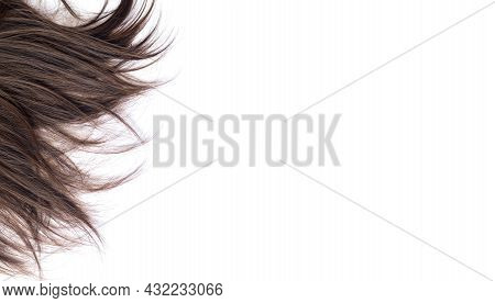 Lock Of Dark Brunette Straight Hair Isolated On White Background. Hair Cut, Styling, Care Or Extensi