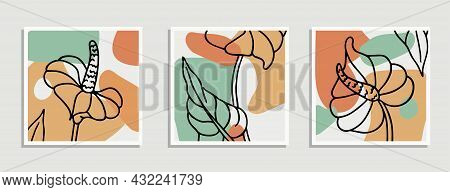 Collage Abstract Organic Shapes. Set. Collection Of Contemporary Art Posters. Minimal And Natural Wa