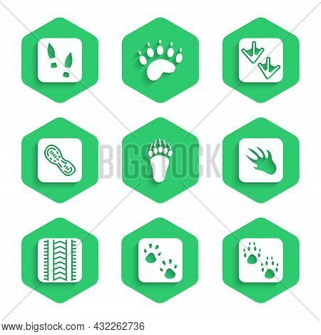 Set Bear Paw Footprint, Paw, Alligator Crocodile, Tire Track, Human Footprints Shoes, Goose And Icon