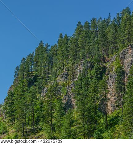 The Spearfish Canyon In The Black Hills Of Savoy, Lawrence County, South Dakota