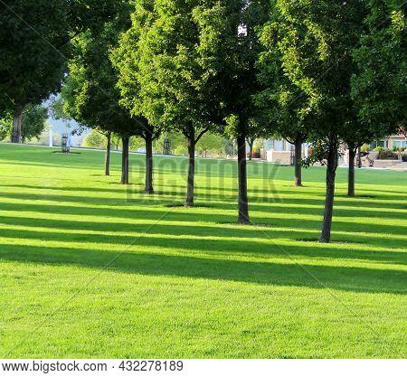 Long Shadows At Pioneer Park In Downtown Kelowna, Bc, Canada.
