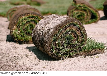 Fresh Grass Rolls Of Turf. Preparation For Planting Of New Lawn