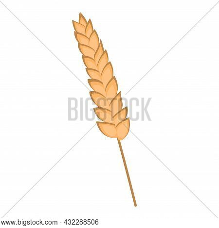 Spikelet Of Wheat. Flat Vector Illustration Isolated On White Background