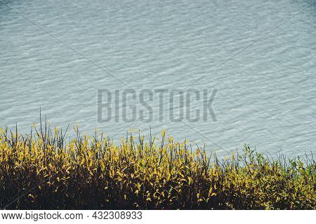 Meditative Autumn Nature Background With Golden Leaves Above Shiny Lake Water With Ripples. Beautifu