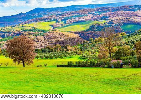 Italy. Sunny warm winter. December. Travel to a fabulousl land. The famous vineyards of Tuscany on the slopes of the hills. The picturesque green hills of the province of Tuscany.