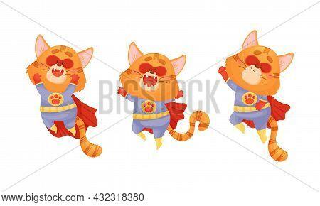 Ginger Whiskered Cat In Red Superhero Cloak Jumping Vector Set