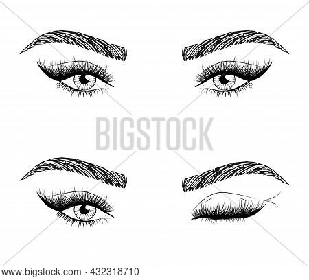 Woman's Sexy Luxurious Eye With Perfectly Shaped Eyebrows And Fluffy Lashes. Idea For Business Visit