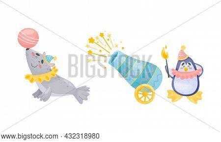 Circus Fur Seal And Penguin Animal With Ball And Cannon Performing Trick Vector Set