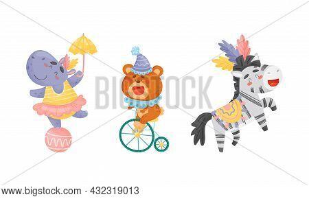 Circus Bear And Hippo Animal Cycling And Balancing On Ball Performing Trick Vector Set