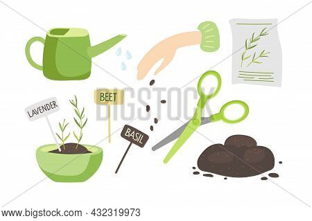 Growing Plants At Home Set. Seed For Planting Pack, Seeds, Fresh Little Plants In Pot, Watering Can,