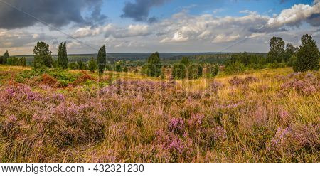 Far View From The Wilseder Mountain, To The North, In The Middle Of The Lueneburg Heath