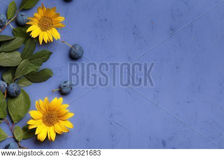 Branches With Blackthorn Sloe Berries, Sunflower Flower On A Purple Background With Copy Space. Than