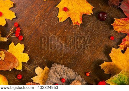 Autumn Art Composition - Varied Dried Leaves, Pumpkins, Fruits, Rowan Berries On Wooden Background.