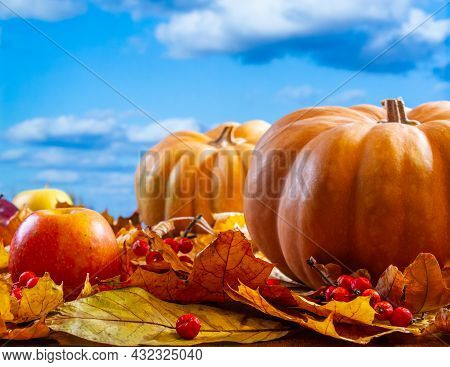 Autumn Art Composition - Varied Dried Leaves, Pumpkins, Fruits, Rowan Berries On Natural Bright Back