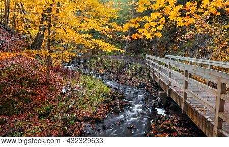 Colorful autumn trees over Wagner creek in Michigan upper peninsula