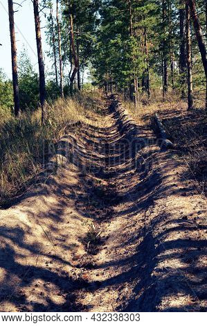 Fire Ditch. Trench In The Forest.big Pit
