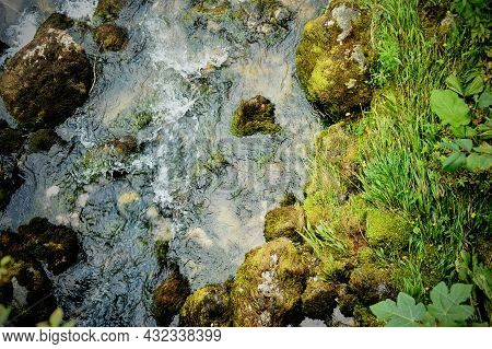 Mountain River Under Green Trees. Stones In The Water. Abkhazia Is A Country Of Soul.