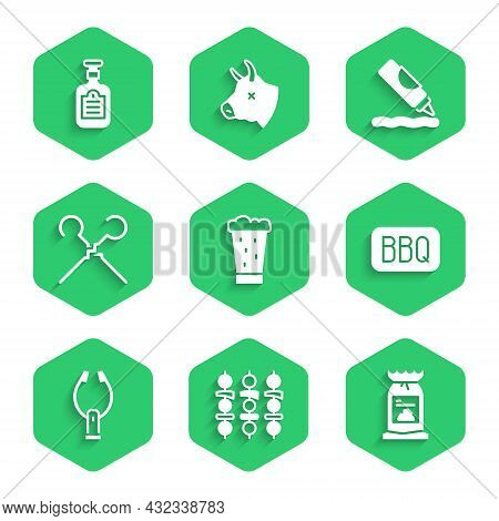 Set Glass Of Beer, Grilled Shish Kebab, Barbecue Coal Bag, Meat Tongs, Bbq Skewers, Ketchup Bottle A