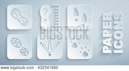 Set Chicken Paw Footprint, Human Footprints Shoes, Paw, Square Measure Size And Icon. Vector