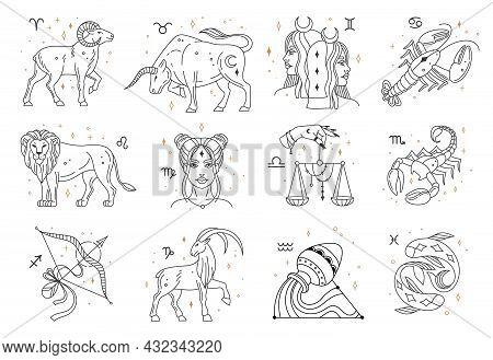 Horoscope Zodiac Signs, Astrology Constellations Symbols. Lion, Pisces, Capricorn, Libra, Cancer, Sa