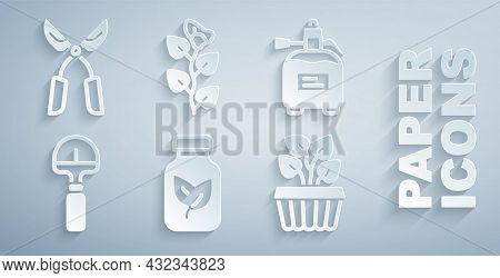 Set Fertilizer Bottle, Garden Sprayer For Fertilizer, Shovel, Indoor Plant Ivy In Pot, Ivy Branch An