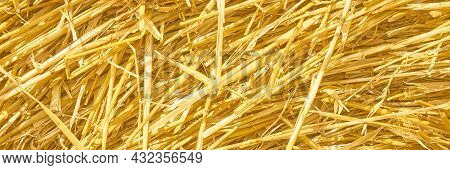Panoramic Banner Of Dry Straw. Autumn Agriculture Background. Defocused Blurred View