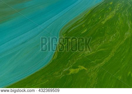 Blue-green Abstract Background Close-up. Water Pollution By Blooming Algae Cyanobacteria Is Environm