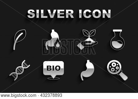 Set Bio Healthy Food, Test Tube And Flask, Microorganisms Under Magnifier, Human Stomach, Dna Symbol