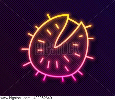 Glowing Neon Line Chestnut Icon Isolated On Black Background. Barbed And Strong Chestnut. Vector