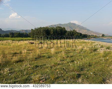 Zarakhela Shamozai Gateway To Swat Valley Beautiful Scenery