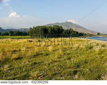 Beautiful Scenery Of River Swat In Swat Valley Pakistan