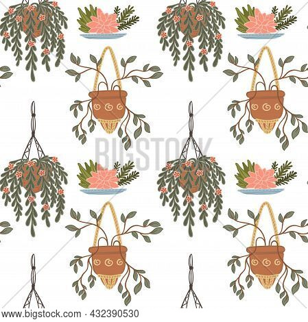 Hanging And Climbing Plants In Pots Flora Vector