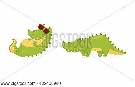 Green Crocodile Or Gator Character Drinking Cocktail Wearing Sunglasses Sunbathing On Beach Vector S